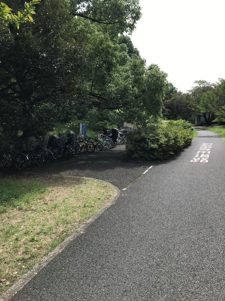 自転車専用道路の表記