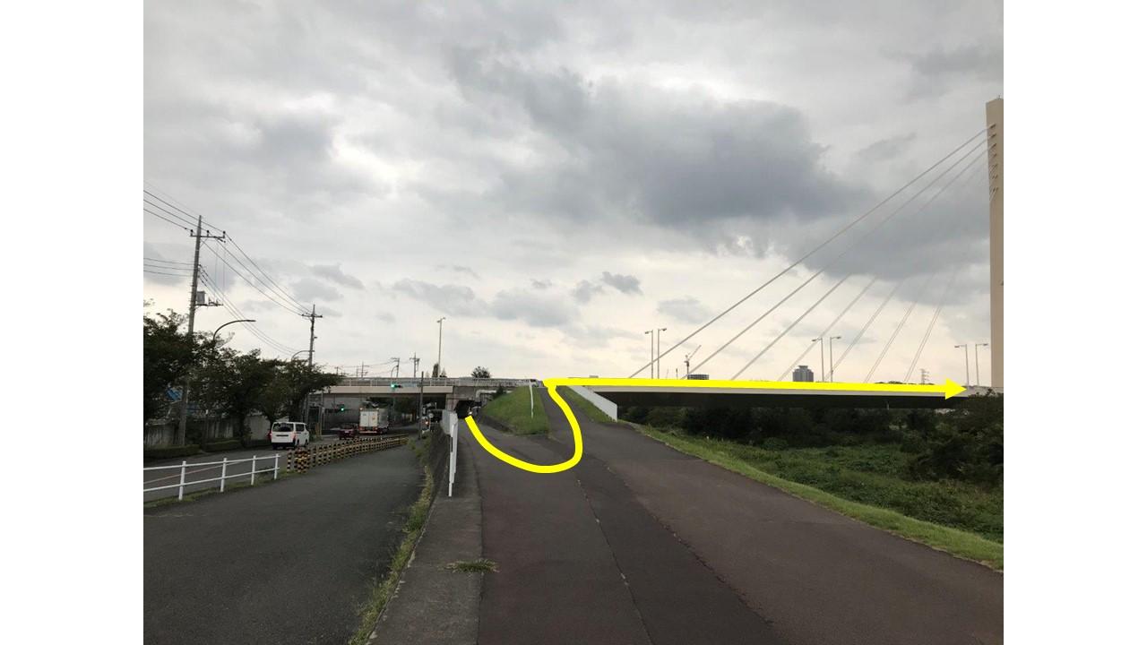 府中四谷橋左岸