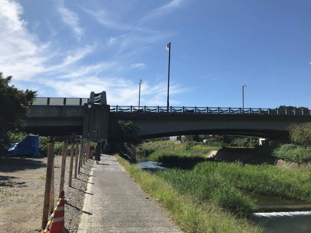 陵南大橋全景
