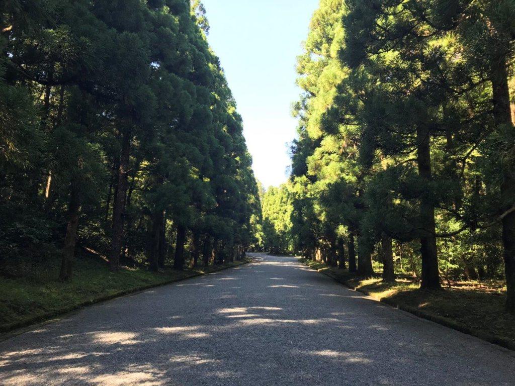 武蔵陵墓地表参道を進む