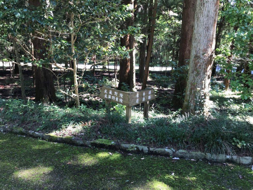 武蔵陵墓地西参道