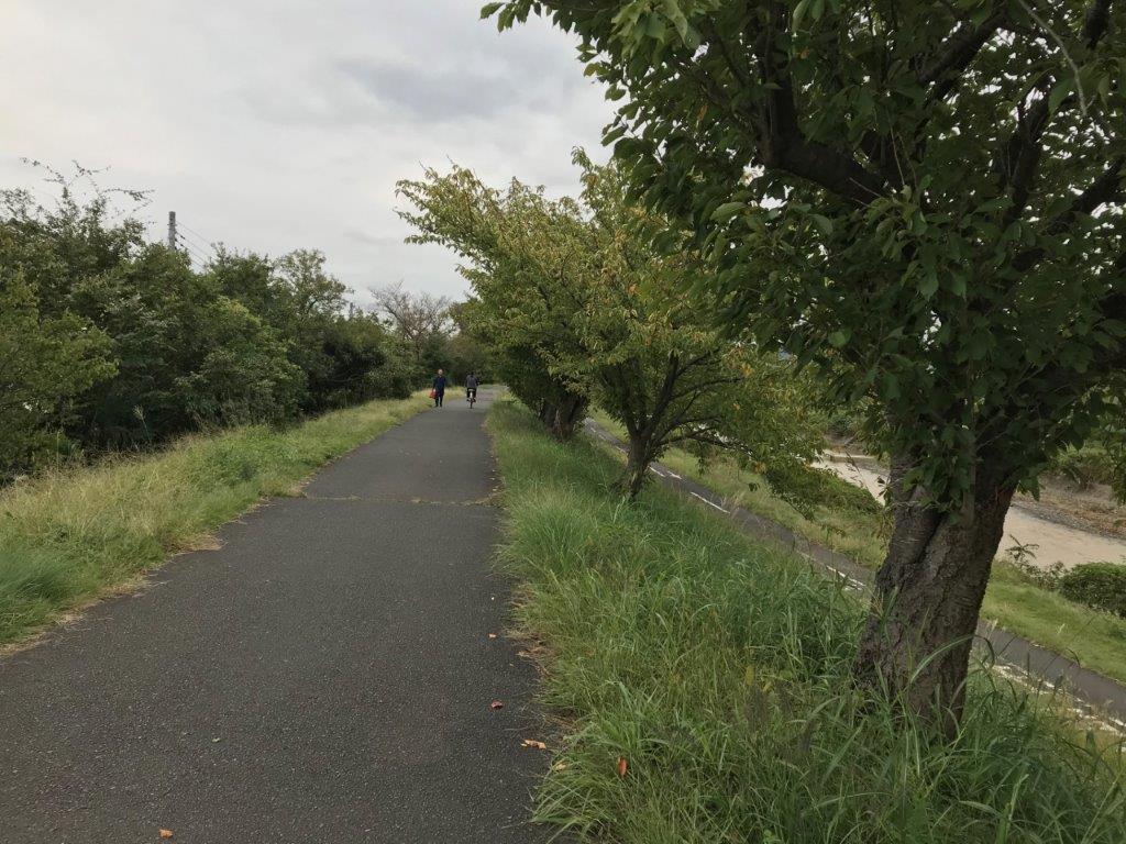 東横山橋先堤防ルート