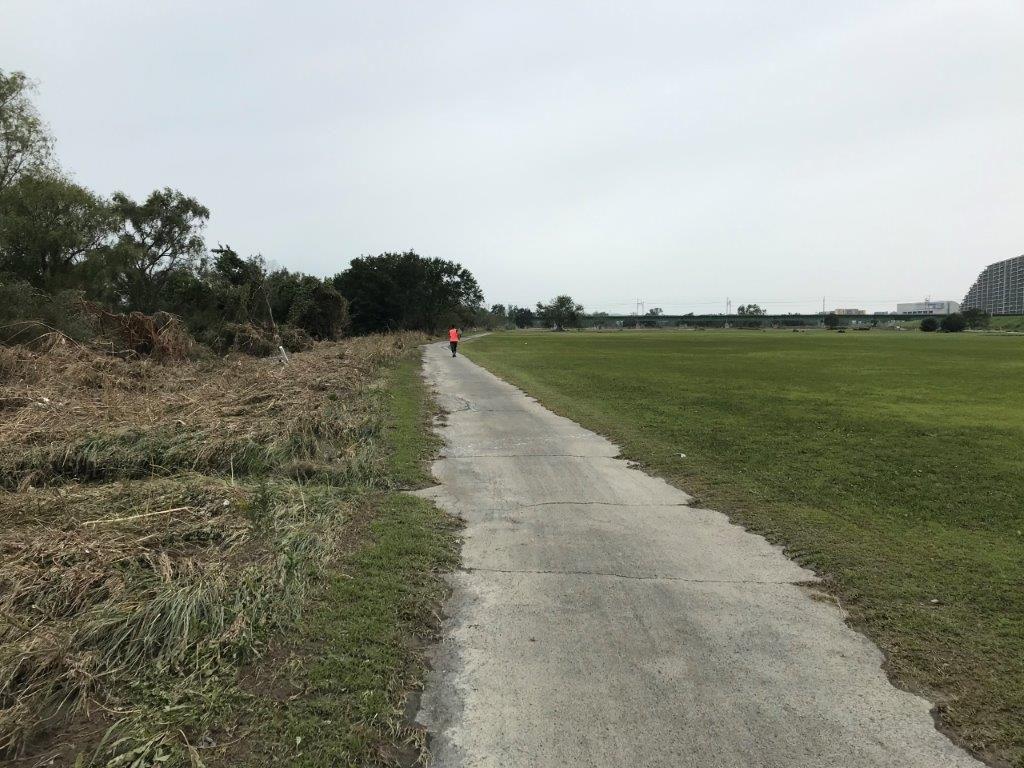 多摩川緑地野球場付近河川敷ルート