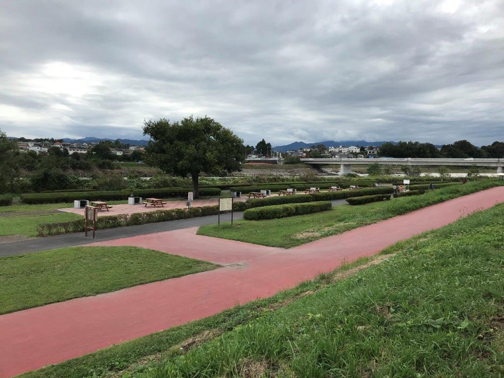 多摩川中央公園河川敷