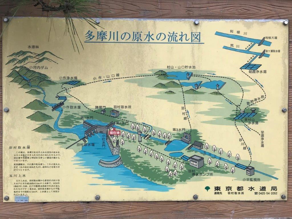 多摩川の原水の流れ図